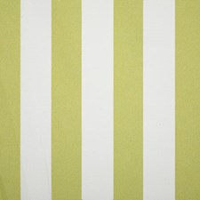 Citrus Stripe Drapery and Upholstery Fabric by Pindler