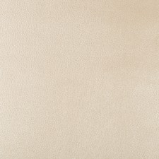 Beige/Ivory Skins Drapery and Upholstery Fabric by Kravet