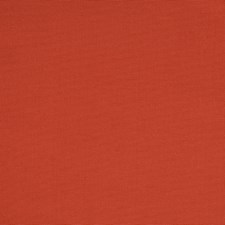 Terracotta Solid Drapery and Upholstery Fabric by Greenhouse