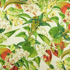 Rainforest Tropical Drapery and Upholstery Fabric by Greenhouse