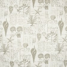 Pewter Tropical Drapery and Upholstery Fabric by Greenhouse