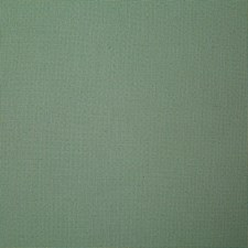 Palm Solid Drapery and Upholstery Fabric by Pindler