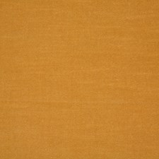 Maize Solid Drapery and Upholstery Fabric by Pindler