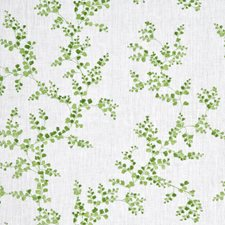 Spring Botanical Drapery and Upholstery Fabric by G P & J Baker