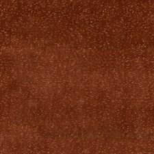 Sienna Velvet Drapery and Upholstery Fabric by G P & J Baker