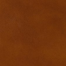 Brandy Leather Drapery and Upholstery Fabric by Brunschwig & Fils