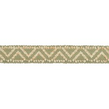 Braids Bone and Taupe Trim by Brunschwig & Fils