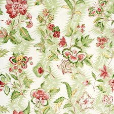 Coral/Lettuce Botanical Drapery and Upholstery Fabric by Brunschwig & Fils
