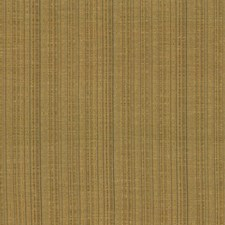 Bullion Drapery and Upholstery Fabric by Kasmir