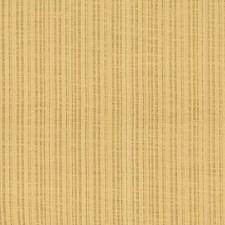 Chutney Drapery and Upholstery Fabric by Kasmir