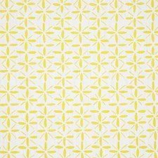 Canary Print Drapery and Upholstery Fabric by Pindler