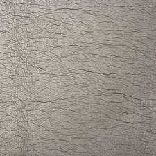 Grey/Silver Metallic Drapery and Upholstery Fabric by Kravet