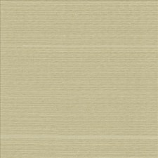 Sand Dollar Drapery and Upholstery Fabric by Kasmir