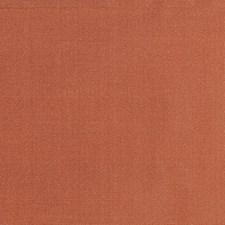 Irish Setter Drapery and Upholstery Fabric by Scalamandre