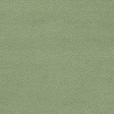 Asparagus Drapery and Upholstery Fabric by Scalamandre