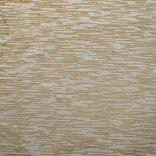 Tortora Drapery and Upholstery Fabric by Scalamandre