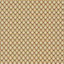 Ochre Drapery and Upholstery Fabric by Kasmir