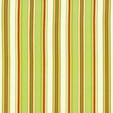 Jasmine Drapery and Upholstery Fabric by Kasmir