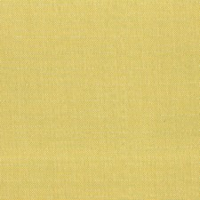 Citron Drapery and Upholstery Fabric by Silver State