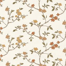 Apricot Embroidery Drapery and Upholstery Fabric by Duralee