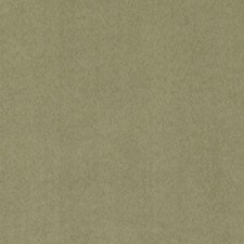 Kiwi Faux Leather Drapery and Upholstery Fabric by Duralee