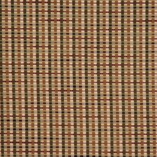 Rye Grass Drapery and Upholstery Fabric by RM Coco