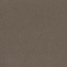 Nutmeg Solid Drapery and Upholstery Fabric by Duralee