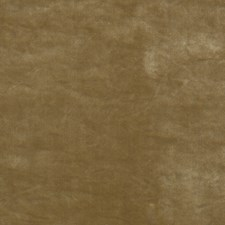 Camel Velvet Drapery and Upholstery Fabric by Threads
