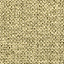 Fern Solids Drapery and Upholstery Fabric by Clarke & Clarke