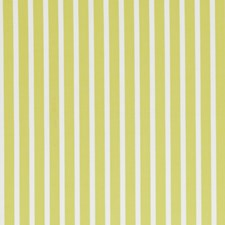 Acacia Stripes Drapery and Upholstery Fabric by Clarke & Clarke