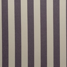 Damson Stripes Drapery and Upholstery Fabric by Clarke & Clarke