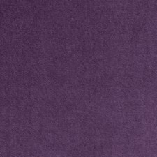Pansy Solid Drapery and Upholstery Fabric by Clarke & Clarke