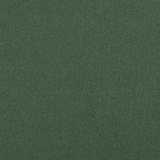Forest Solids Drapery and Upholstery Fabric by Clarke & Clarke