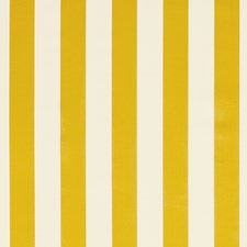 Gold Stripe Drapery and Upholstery Fabric by Clarke & Clarke