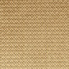 Gold Drapery and Upholstery Fabric by Clarke & Clarke