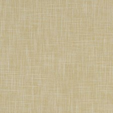 Corn Solid Drapery and Upholstery Fabric by Clarke & Clarke
