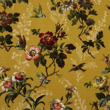 Velvet Ochre Drapery and Upholstery Fabric by Clarke & Clarke