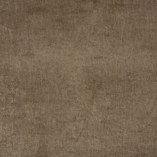 Mink Velvet Drapery and Upholstery Fabric by Mulberry Home