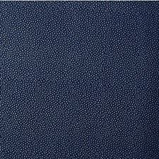 Starlight Animal Skins Drapery and Upholstery Fabric by Kravet