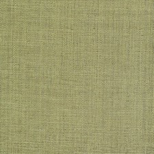 Palm Drapery and Upholstery Fabric by Kasmir