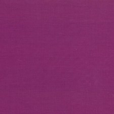 Dewberry Drapery and Upholstery Fabric by Kasmir