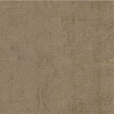 Sandstone Modern Drapery and Upholstery Fabric by Groundworks