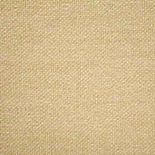 Tussah Solid Drapery and Upholstery Fabric by Pindler