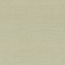 Celery Seed Drapery and Upholstery Fabric by Kasmir