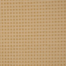 Midas Drapery and Upholstery Fabric by RM Coco