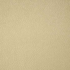 Chamois Solid Drapery and Upholstery Fabric by Pindler