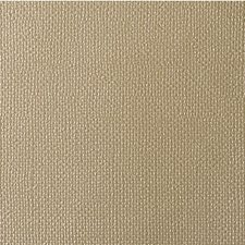 Radiant Solids Drapery and Upholstery Fabric by Kravet