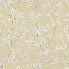 Whisper Botanical Drapery and Upholstery Fabric by Kravet