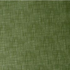 Herbal Solids Drapery and Upholstery Fabric by Kravet