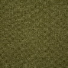 Sage Solid Drapery and Upholstery Fabric by Pindler